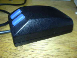 Mouse TPX